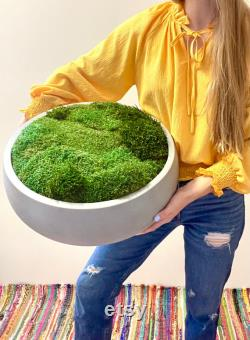 18 Moss Bowl Of The Table Masterpiece Preserved Foam