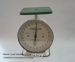 White And Vintage Green Domestic Scale Chatillon