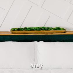 36 Dough Bowl Table Centerpiece Preserved Moss Office Décor