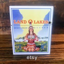 Land O Lakes tin EXCELLENT CONDITION, Land O Lakes recipe box vintage, boîte à recettes d étain, Land O Lakes collectable, discontinué Land O Lakes